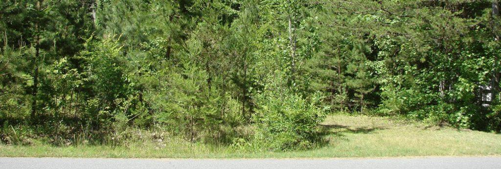 4311-eagle-chase-drive