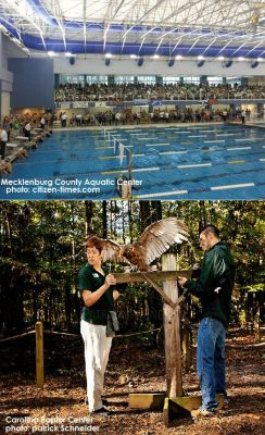 Mecklenburg County Aquatic Center, Carolina Raptor Center, Home for Rent, 1430 Bray Drive Charlotte NC 28214
