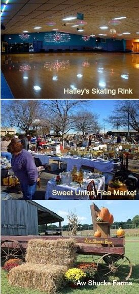 Sweet Union Flea Market ,Aw Shucks Farms, Hatley's Skating Rink, home for sale, 1423 Macedonia Church Road Monroe NC 28112