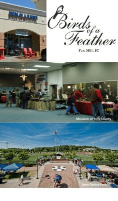 Museum of York County, Birds of a Feather, New Centre Park, home for sale
